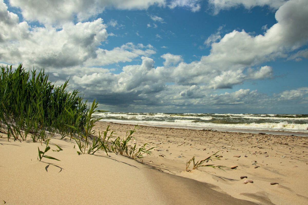Apartemany Łukęcin – widok na trawiaste wydmy, plażę i lekko wzburzone morze